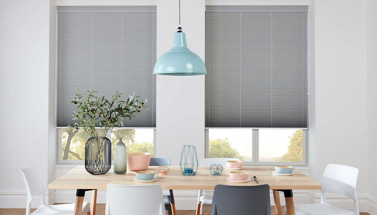 treated window blinds